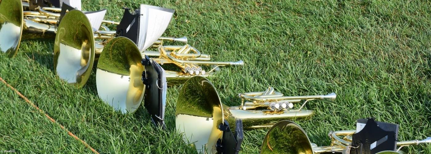 Musikinstrumente in der Wiese